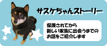 sasuke_banner