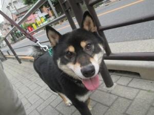 j-sasuke0605