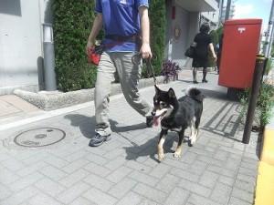 j-sasuke0630