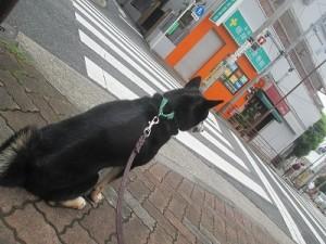 j-sasuke0921