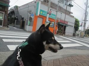 j-sasuke0926