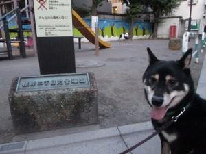 j-sasuke1104